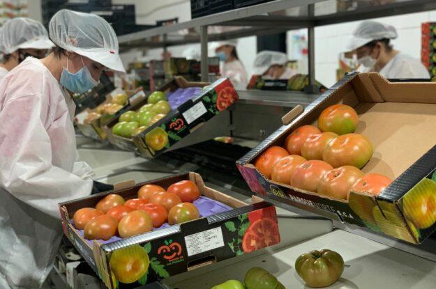 El Tomate de Los Palacios, el gran vencedor ante la COVID-19